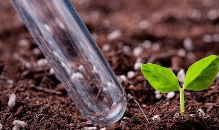 Агрохимическое обследование почвы: для чего и как проводится