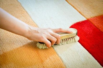 Самостоятельная чистка ковра от шерсти: правила процедуры и советы
